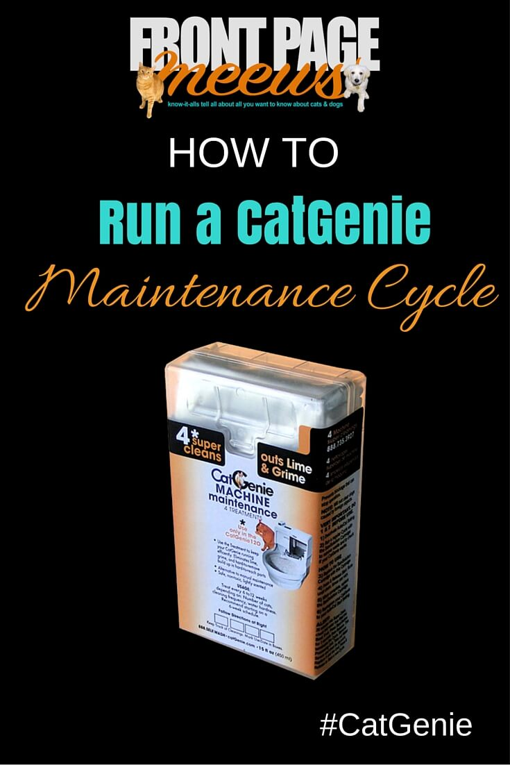 running a maintenance cycle - Catgenie Com