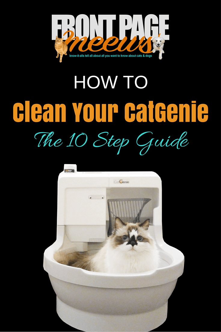 Cleaning Your CatGenie