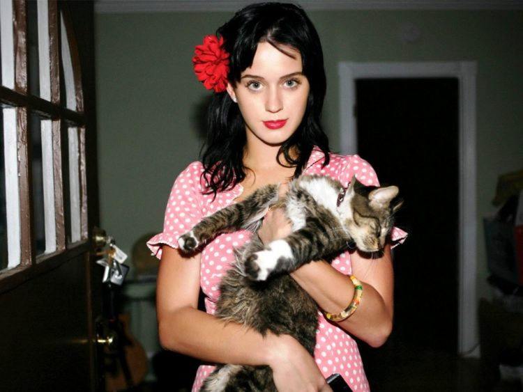 5 Famous Cat Moms and Their Feline Furbabies