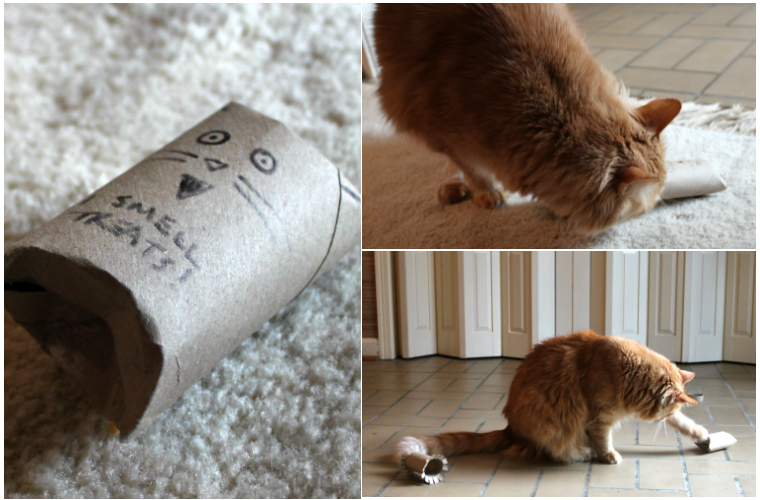 3 Ways To Go Green With Recycled DIY Cat Toys