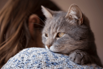 Purring Power - Do Cat's Purrs Have the Ability to Heal?
