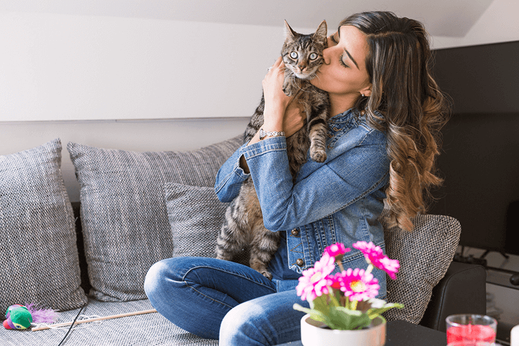 How To Spend Valentine's Day With Your Cat